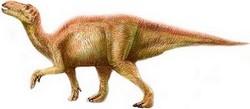 Site Internet sur la préhistoire et les dinosaures.